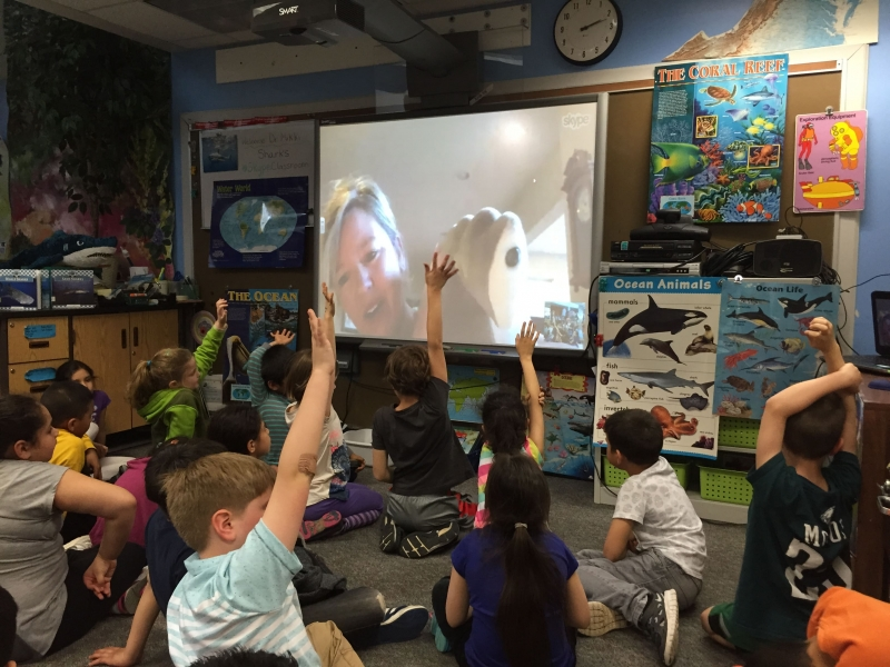 Skype classroom by Laurie Sullivan